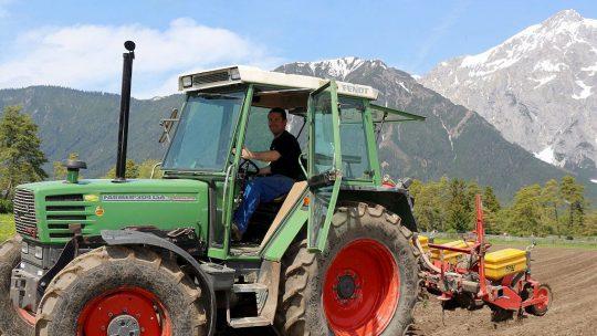 Für den Obermieminger Bauern Hannes Post ist der Lagerhaus-Mais am besten. (Foto: Knut Kuckel)